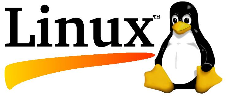 שירותי תמיכה בלינוקס Linux